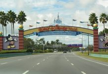 walt disney world - federadiove