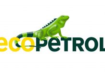 Diversidad Ecopetrol
