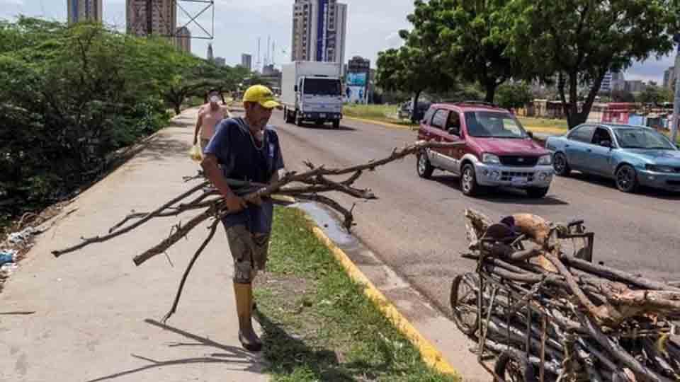 papa-produccion-tachira-venezuela-federadiove