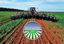Fedeagro tomó las riendas para lograr la producción de alimentos del país