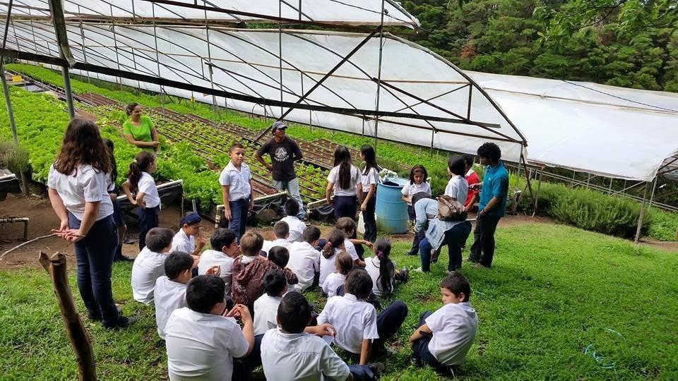 Empresas ñ- proyectos - sostenibles